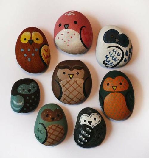 Owls!!!!