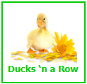 Ducks 'n a Row