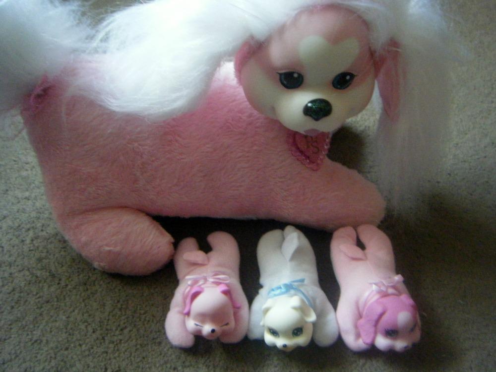 puppy surprise 5