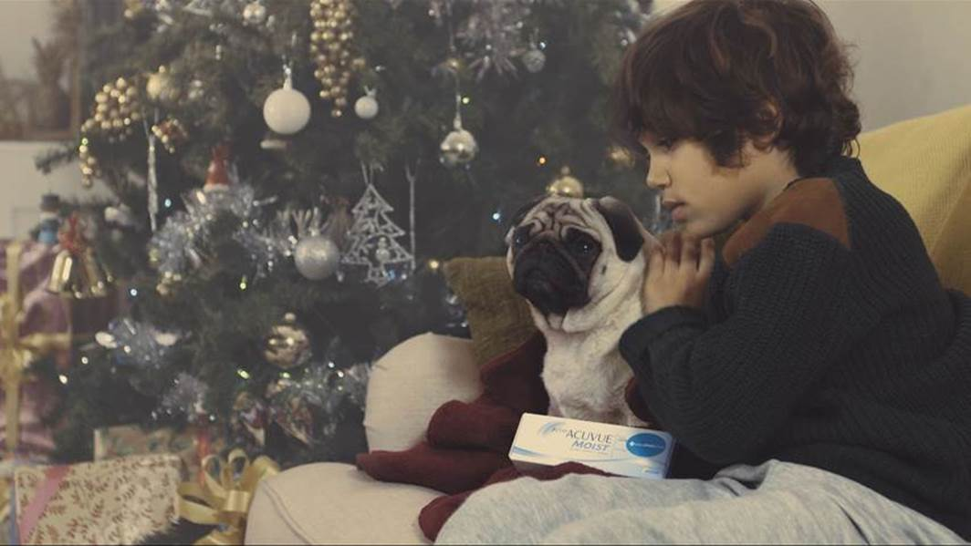 Vision Direct A Pug's Christmas Ad