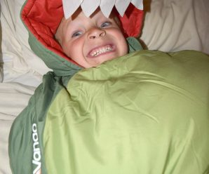 Dragon Sleeping Bag Review