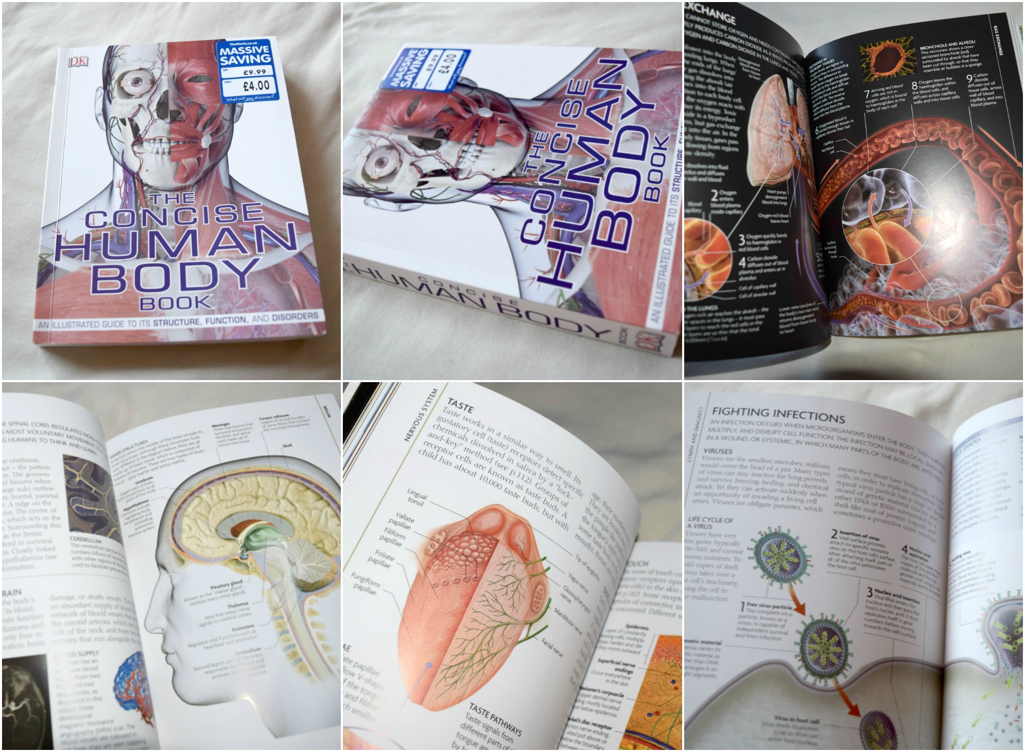 the-concise-human-body-book-collage