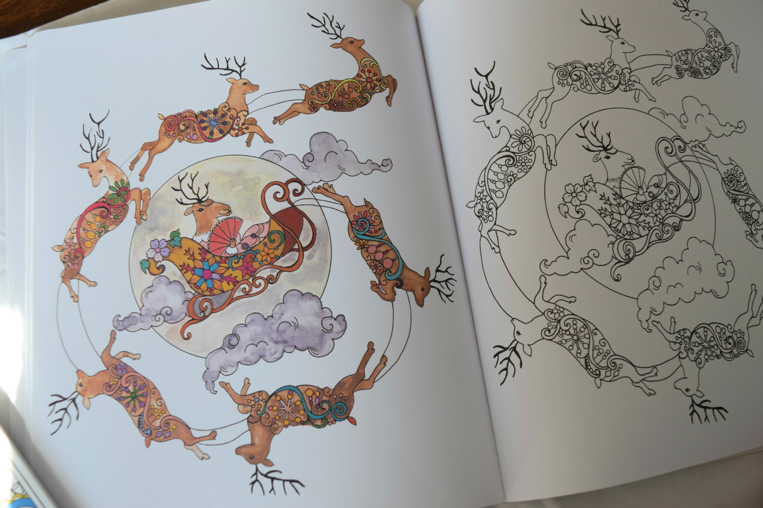 The World's Cutest Animal Colouring Book Review